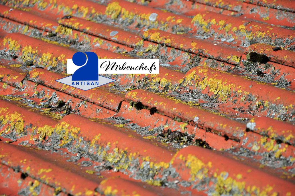 Traitement chimique parasitaire toiture Mérignac 33700